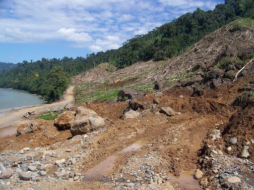Bosque Protector de Palo Seco, Valle de Risco, R�o Changuinola