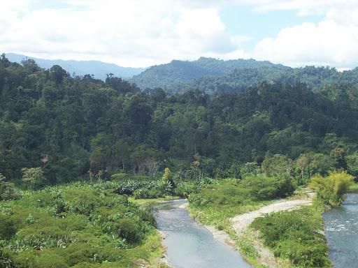 Comarca Naso Teribe, Bosque Protector de Palo Seco, al Fondo el PILA