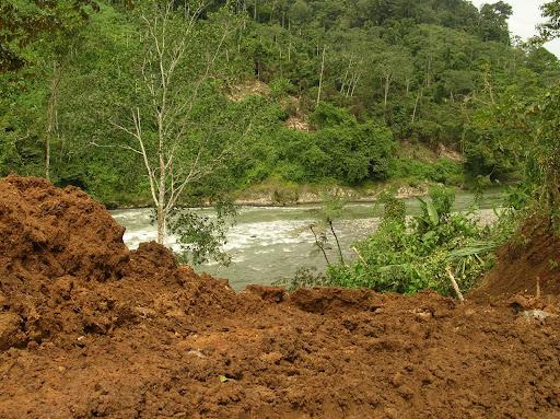 Destruccion del Bosque Protector de Palo Seco
