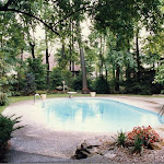 images-Pool Environments and Pool Houses-Pools_16.jpg