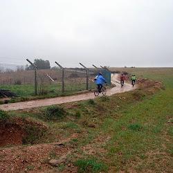 II-BTT-Amendoeiras (69).jpg