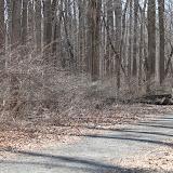 Institute Woods 6K - IMG_4859.JPG