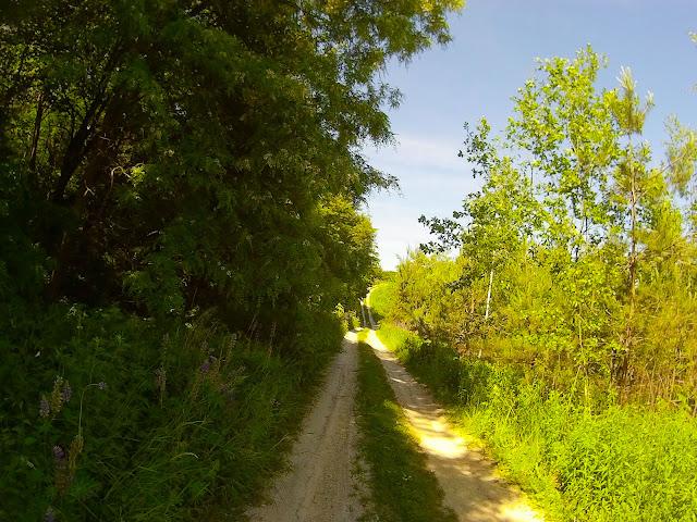 дорога серед пагорбів