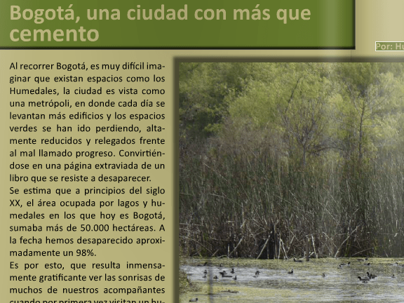 Humedales Bogotá en la revista Punto de Vista