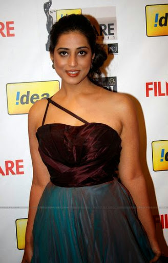 Mahi Gill Measurement