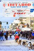 Iditarod2015_0223.JPG