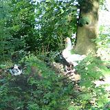 Ieper 10 en 11 juli 2004 - DSCF2492.JPG