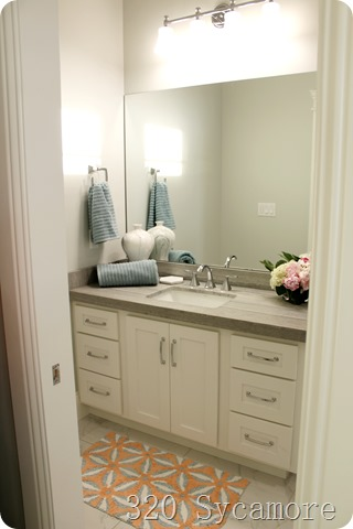 guest bathroom paint color
