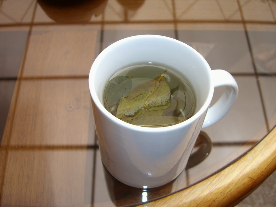 Cocoa Leaf Tea