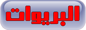 BRIWAT.png (300×105)