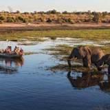 botswana safari holidays 2017