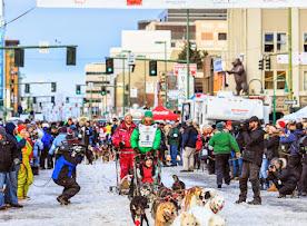 Iditarod2015_0177.JPG