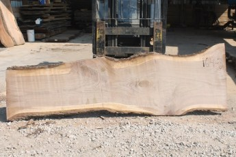 "164 Walnut -3 2"" x 37"" x 23"" Wide x 10' Long"