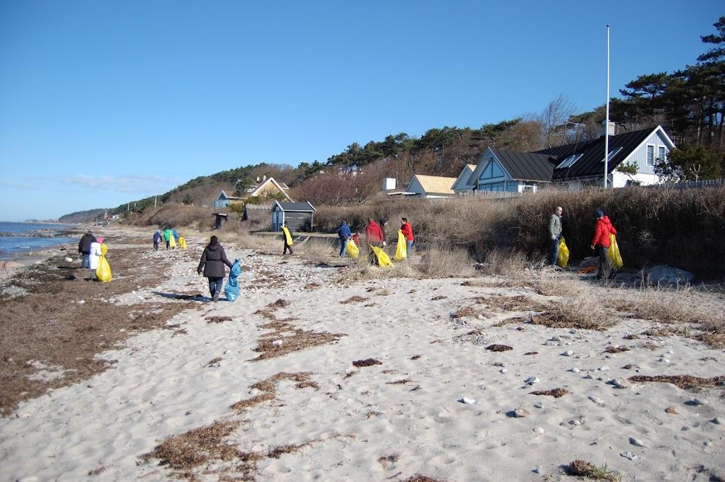 Strandstädning 2013 - DSC_1696.JPG