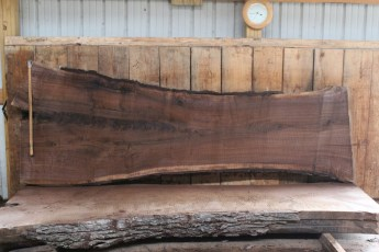 "509 Walnut -3 10/4  x  47"" x  28"" Wide x 10' Long"