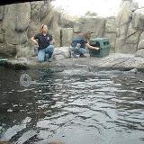 Montery Bay Aquarium, USA - 207779476_6e556e4416.jpg