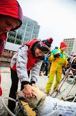 Iditarod2015_0103.JPG