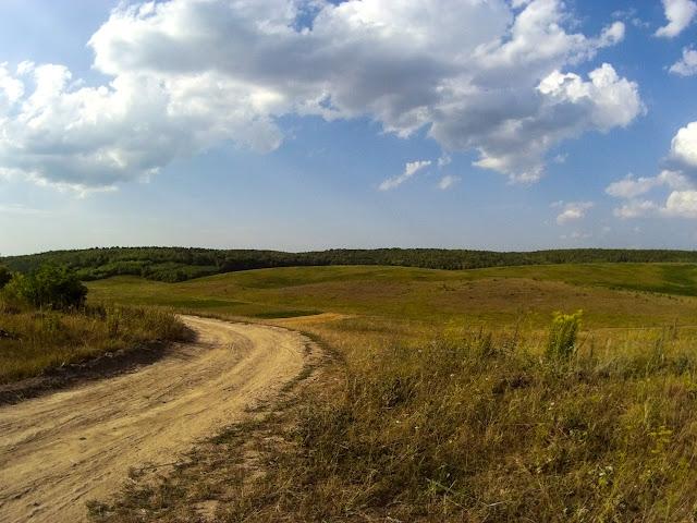 Дорога до лісочка