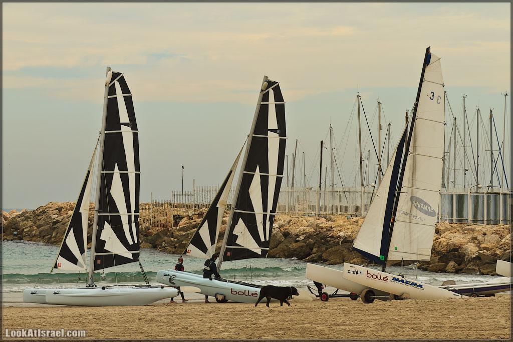 Тель Авивская набережная | Tel Aviv beach | חוף תל אביב