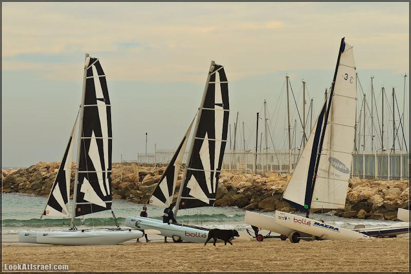 Фото:  И вновь о Тель Авивской набережной