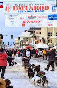 Iditarod2015_0237.JPG