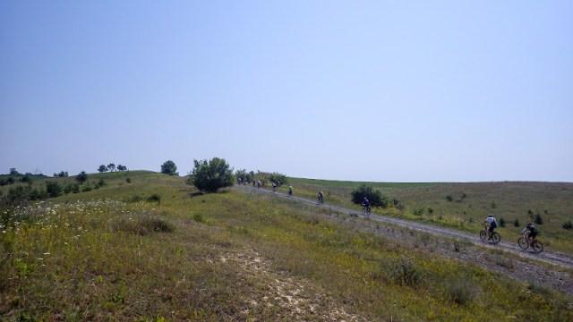 Дорога полями
