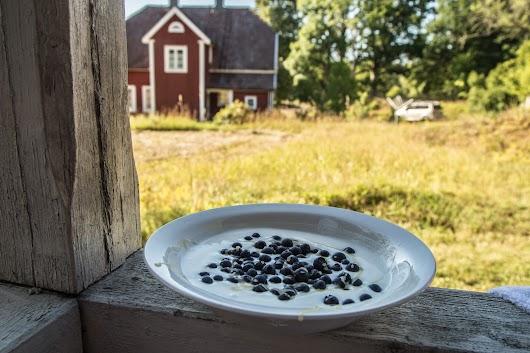 Svenske blåbær - Mikkel Bækgaards Madblog-21.jpg