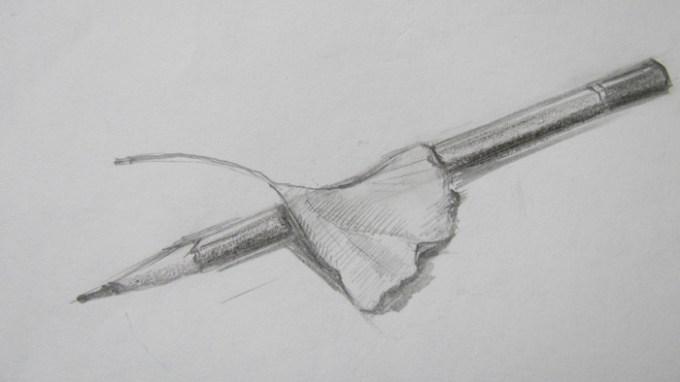 ann-sokolova-leaf-with-pencil