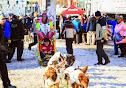 Iditarod2015_0395.JPG