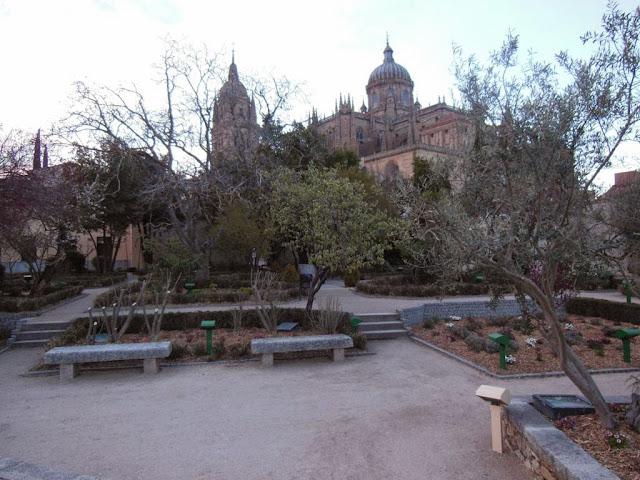 Vistas de la Catedral desde el huerto
