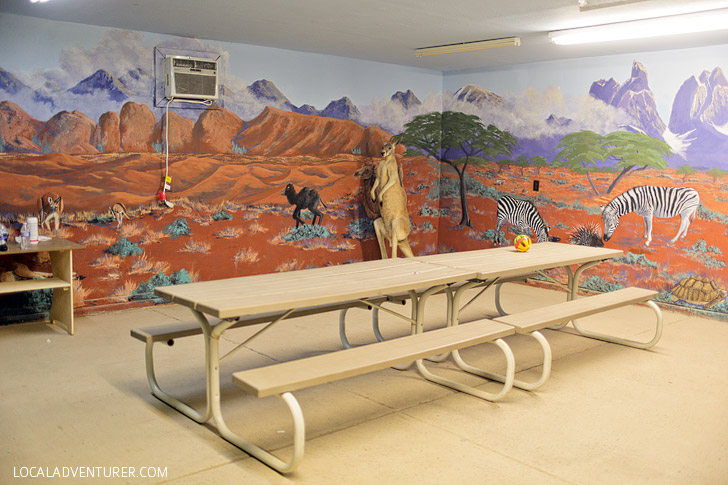 Party Room at Roos n More Zoo Moapa NV.
