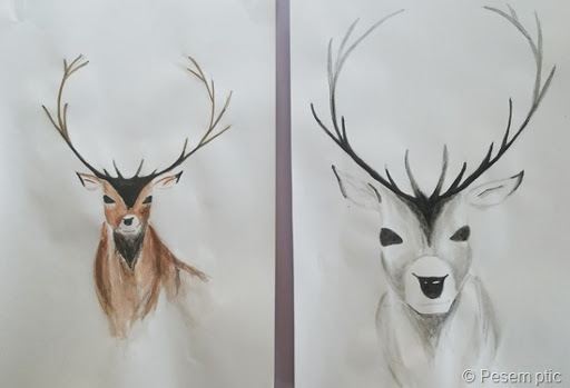 jelena (Ustvarjalni dnevi)