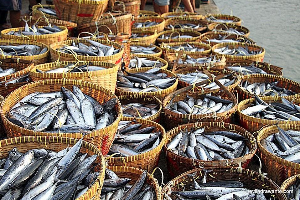 Foto keranjang-keranjang ikan yang akan dilelang