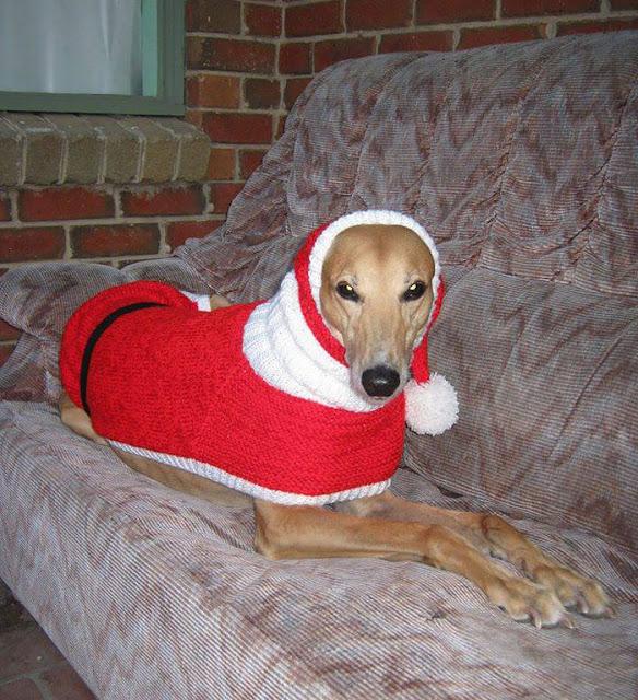 костюмы для собак на новый год