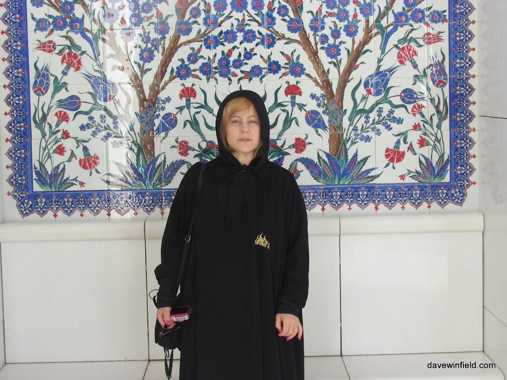 0310Sheik Zayfed Mosque
