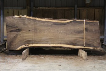 "616 Walnut - 5 10/4 x 48"" x 36"" Wide x  10'  Long"