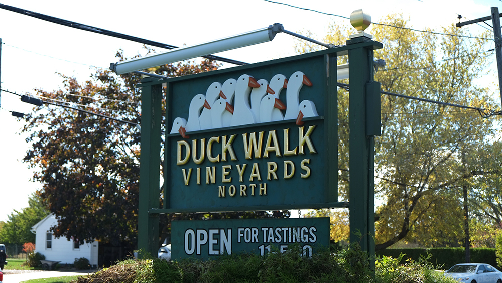 Duck Walk Vineyards North