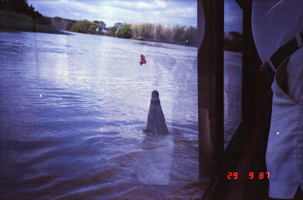 5960Adelaide River Croc Tour