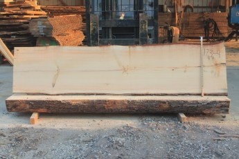 White Pine 173-4  Length 10' Max Width (inches) 30 Min Width (inches) 27 Notes 10/4