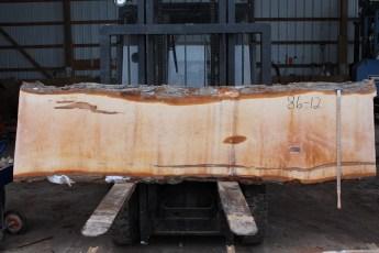 """086 - 12 Hard Maple 2 x3 26 - 20"""" Wide x 9' Long  Kiln dried"""