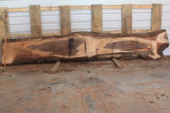 Walnut 221-8  Length 15' Max Width (inches) 24 Min Width (inches) 6 Notes 10/4 Kiln Dried
