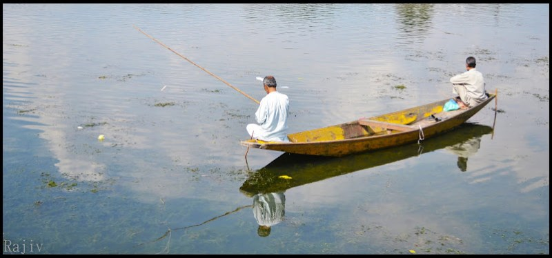 Locals fishing in the Dal lake