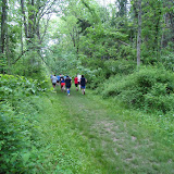 Mountain Lakes Trail Run - DSC00713.JPG