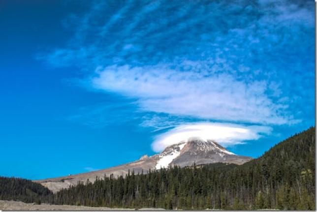 Domesticability Oregon Trip Mt. St Helens Haystack Rock Tidepools_-165