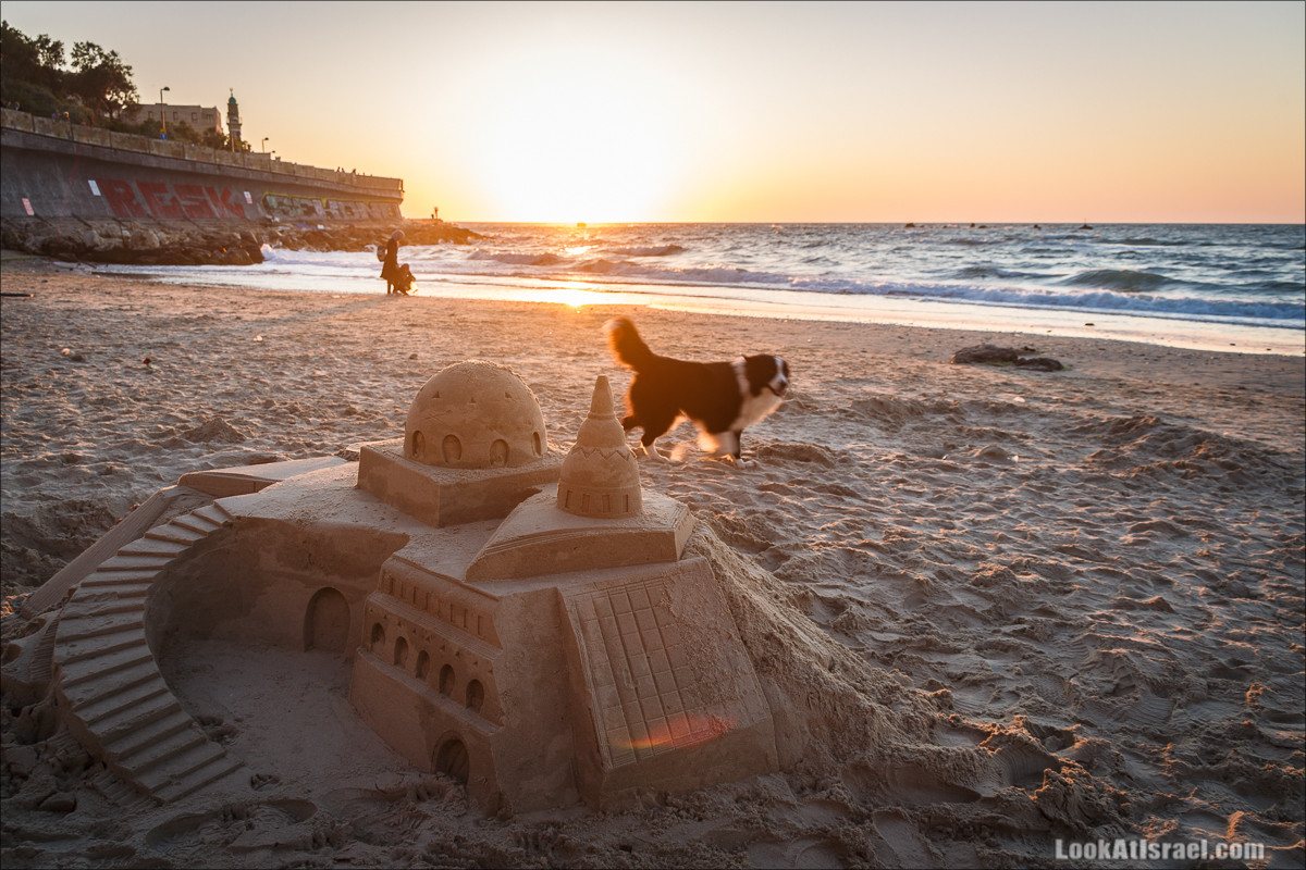 Одно фото песочного замка