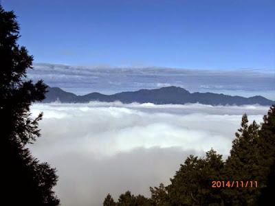 太平山之旅-台灣山毛櫸國家步道上