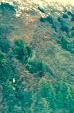 tundra 3.jpg