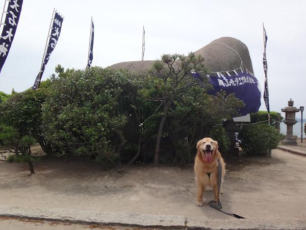 犬島 犬石様とララ(ゴールデンレトリバー)