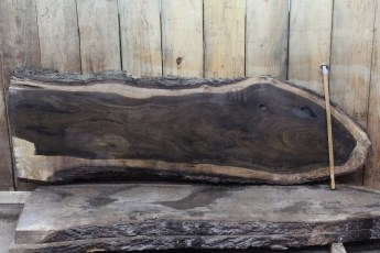 "414 Walnut -2 2"" x 29"" x 14"" Wide x 8' Long  Kiln Dried"