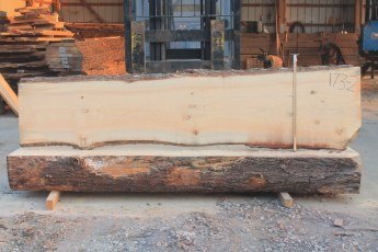 White Pine 173-2  Length 10' Max Width (inches) 29 Min Width (inches) 22 Notes 10/4
